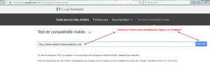 """Test de compatibilité """"friendly"""" de Google"""